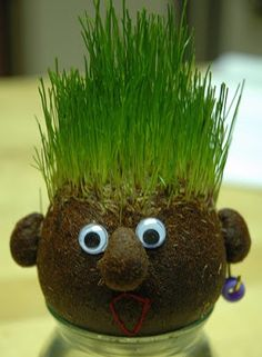 Kids love growing grass seed because it is easy to sprout and grows quickly. These growing grass heads are super fun for spring & kids can even style their plant person's hair! Diy Craft Projects, Diy Crafts For Kids, Kids Diy, Craft Ideas, Diy Niños Manualidades, Market Day Ideas, Kids Market, Earth Day Crafts, Earth Day Projects