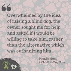 Pagal's Mom... Well, she and Pagal have a beautiful story to tell. | Read more Pet Parent Life Stories at Not So Mommy..., a childless dog mom blog. | Dog Mom | Dog Moms | Dog Mommy | Dog Mom Blog | Dog Mom Blogs | Dog Mom Life | Dog Mom Problems | Dog Mom Proud | Proud Dog Mom | Fur Mom | Fur Moms | Fur Mama | Fur Mamas | Fur Mommy | Pet Parent | Pet Parents | Dog Lover | Dog Lovers | Dog Quote | Dog Quotes | Animal Lover | Animal Lovers | Dogs and Puppies | Puppies and Dogs | Childless Woman Puppies Puppies, Cute Puppies, Cute Puppy Photos, Dog Quotes, Mom Blogs, Dog Mom, Dog Lovers, Parents, Fur