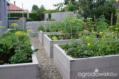 Ogród niby nowoczesny… u Diy Garden Bed, Garden Boxes, Vegetable Garden, Raised Planter Beds, Raised Garden Beds, Chicken Coop Garden, Garden Theme, Farm Gardens, Garden Spaces