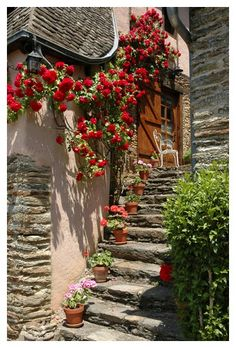 Conques - Aveyron - France