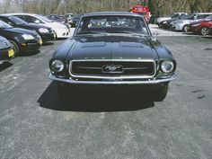 Are you looking for a classic american car that everybody knows and that has a huge following of devoted fans? Let's have a look at one of the most iconic american cars, the legendary Ford Mustang from 1968.