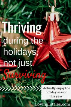 It's time to make a change this holiday season. No more running around like a headless chicken. It's time to actually Savor the Holidays this year.