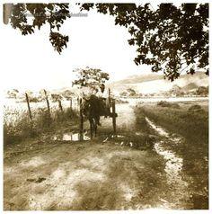 LAS DELICIAS, SABANA GRANDE CARACAS EN RETROSPECTIVA: De Sabana Grande a Chacao