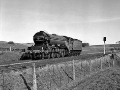 Train Car, Train Tracks, Flying Scotsman, Choo Choo Train, Pennsylvania Railroad, Train Pictures, Train Engines, Steam Engine, Steam Locomotive