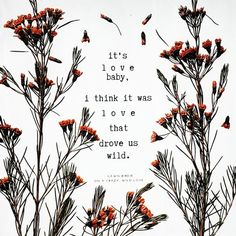 Gawn Birdie | Home Sweet Romantic Quotes, Wild Love, Things To Think About, Author, Lettering, Calligraphy, Writers, Letters, Texting