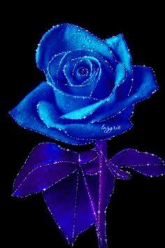 Pinned by sherry decker Flowers Gif, Dark Flowers, Beautiful Rose Flowers, Pastel Flowers, Beautiful Gif, Purple Roses, Blue Roses Wallpaper, Vintage Wallpaper, Wallpaper Free