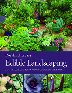 The Edible Front Yard describes how to replace boring, needy, thirsty grass with a diverse mix of ornamentals and edibles. -- Check out this great article. #LandscapingTips