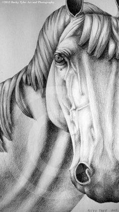 White Arabian Horse Original Drawing Graphite by BeckyTylerArt, $75.00