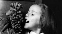 Norcia, anni 30.è tempo di vendemmia: una bambina con un grappolo d'uva coltivato nelle nostre vigne.