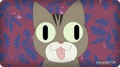 CAT SONG - YouTube