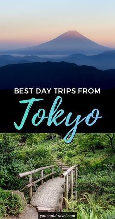 Best Day trips from Tokyo - Wondering what are the best day trips from Tokyo? Here are our 9 favourite destinations which are super easy to reach by shinkansen. #japan #tokyo #guide