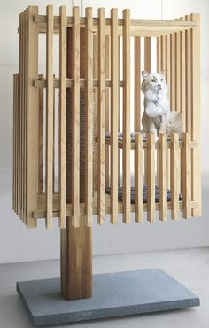 Purrrch, designed by Toby Sherrard and Eleanor Donnelly of Stelle Lomont Rouhani Architects, built by Artisan Construction Associates, modeled by Sammy. Diy Cat Tree, Most Beautiful Dogs, Cat Playground, Cat Room, Pet Furniture, Pet Home, Dog Houses, Diy Stuffed Animals, Crazy Cats