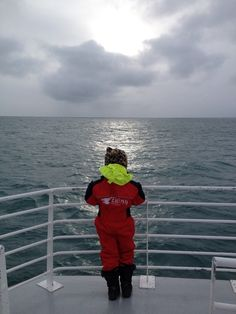 Whale, Dolphin and Puffin watching in Iceland.