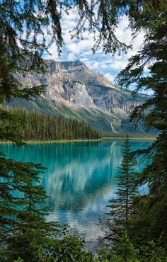 Emerald Lake,Yoho National Park, British Columbia,Canada--It is the largest of…