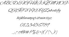beautiful flowing brush script
