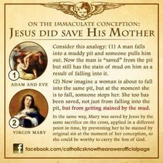 8 is the feast day of the Immaculate Conception of Our Lady. She was born without original sin but was saved prior to being conceived. Catholic Theology, Catholic Religious Education, Catholic Catechism, Catholic Answers, Catholic Religion, Catholic Quotes, Catholic Prayers, Catholic Traditions, Teaching Religion