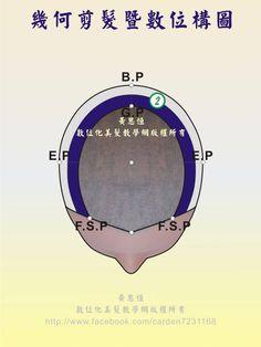 橫髮片劃分(Horizontal parting)在第2設計區的構圖-頂面呈現
