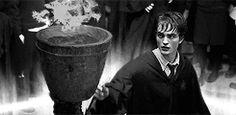 Cedric Diggory - Cute Robert GIF