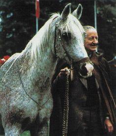 BANDOLA (Witraz x Balalajka by Amurath Sahib) ~ Pictured @ 30 years old with Janów Podlaski Director Andrzej Krzysztalowicz (See also: http://www.janow.arabians.pl/en/history/stud.php) Ahw June 1984