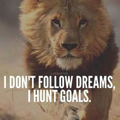 Don't follow dreams, hunt goals.