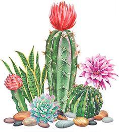 Cactus Art, Cactus Flower, Flower Art, Tropical Wedding Decor, Spring Pictures, Diy Painting, Painting Flowers, Painted Pots, Diy Canvas