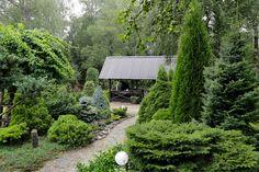 Istutusten ja nurmikon rajaus - Kotipuutarha Traditional Landscape, Garden Cottage, Garden Planning, Landscape Design, Backyard, House Styles, Flowers, Plants, Woodland Garden