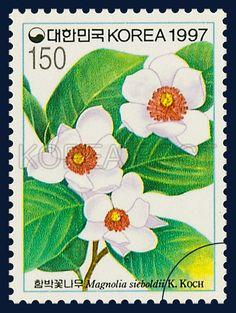 Wild Flower Series (8th), Magnolia sieboldii, Flower, white, green, red, 1997 6 19, 야생화시리즈(여덟번째묶음), 1997년 6월 19일, 1906, 함박꽃나무, postage 우표