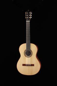 Guitare de Benjamin Paldacci, École nationale de lutherie, 2013