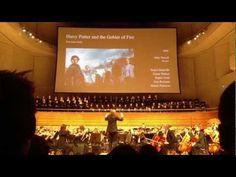 The Music of Patrick Doyle - Harry Potter 4 - 21st Century Symphony Orchestra - Ludgwig Wicki