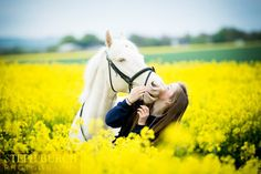 Rosie and Frankie in the Oil Seed Rape fields #horse #equine #equestrian #oilseedrape