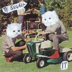 Ty Segall. More on www.stillinrock.com