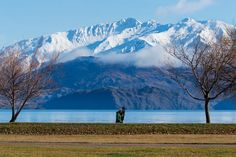 House Sitting, Mans Best Friend, New Zealand, This Is Us, Mountains, Pets, Winter, Travel, Awesome
