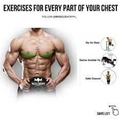 """1,067 Likes, 10 Comments - BodyBuilding Motivation (@gym.fever12) on Instagram: """"(Swipe Left) exercises for every part of your chest. LIKE/SAVE it if you found this useful and…"""""""