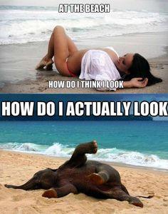 Beach Memes, Beach Humor, Funny Beach, You Funny, Funny Jokes, Funny Stuff, Funny Things, Funny Minion, Frases