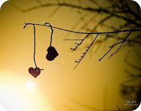 Dissertando Com Tempo: Para Sempre Amor: Um Texto Pra Você
