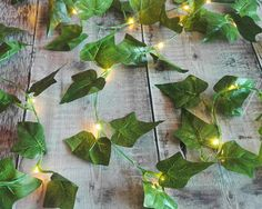 Battery operated extra long Ivy garland with mini LEDs Each garland is 2.5m long with a lit length of 2.3m and features warm white mini LEDs Mini LEDs have been embedded onto silver wire, which has been delicately intertwined with the ivy to create this beautiful LED garland Each Ivy leaf measures approx 7 x 7cm Takes 3 x AA batteries (not included) Indoor use only Need something longer? My green leaf wire LED garlands can be made up to 5m and 10m in length: https://www.etsy.c...