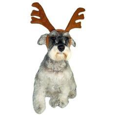 Natal cheio de fofura! <3 Fantasia Rena Dear Dog. #petmeupet #deardog #rena #natal #fantasia #cachorro