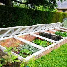 How to Build Cold Frames | Simple project to protect tender plants in winter