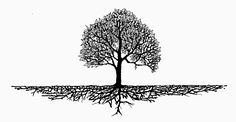 tree roots with words in them - Google Search
