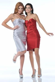 Silver Strapless Pencil Dress Cocktail Knee Length Sweetheart Bow