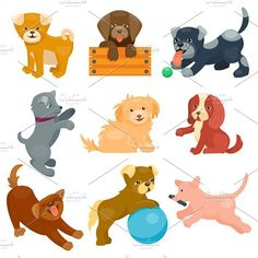 Vector illustration cute dogs. Pet Icons