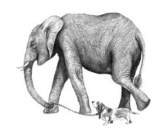 8x10 Giclee Print Elephant and Dog Pencil by HansMyHedgehog, $30.00