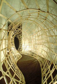 bent wood sculpture - Google Search