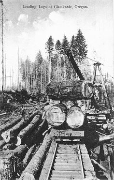 """Loading logs at Clatskanie, Oregon """"In the 1970's  all the men went  to Claskanie after Lincoln County was logged off."""" Very sad ending to long era."""