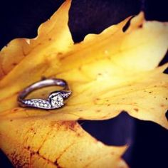 Created this shot in #bethlehem #Pennsylvania with a leaf on a handlebar. I miss fall already, especially on rainy wintry days such as these... #helzberg #helzbergdiamonds #iamloved #ilovehelzberg #leaves #fall #engaged #love #marriage #engagement #diamonds #yellow #masterpiece