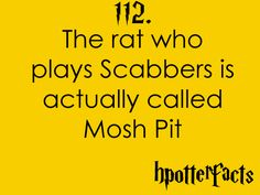 Harry Potter Facts #112:    The rat who plays Scabbers is actually called Mosh Pit.