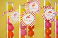 pink gumballs orange yellow tubes favors