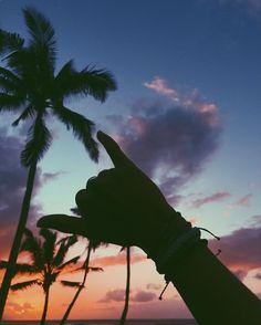 Sunset shaka x @moonawhyte