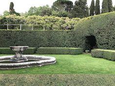 "277 Likes, 3 Comments - Twitter @L_Giubbilei (@lucianogiubbileigardens) on Instagram: ""Sunday morning  #lucianogiubbilei #landscape and #garden #design #sundaymorning"""