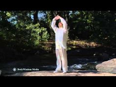 From BodyWisdom's QiGong For Beginners (with 8 Routines) - Interview & First 2 Pieces of Brocade - YouTube